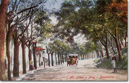aley-boulevard